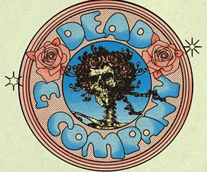 Dead & Company Concert Tour