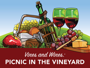 Vines & Wines - Picnic in the Vineyard