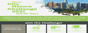 Philadelphia City Nature Challenge 2021