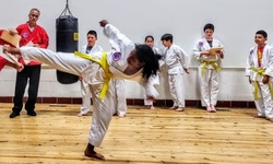 $37 for One Month of Unlimited Online Martial Arts Classes from True Power Martial Arts ($50 Value)