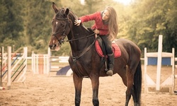 One or Four 30-Minute Horseback-Riding Lessons for One at Silver Lining Stables (Up to 67% Off)