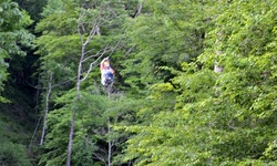 Two-Hour Zipline Tour for One or Two from Black Mountain Thunder Zipline (Up to 52% Off)