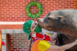 SeaWorld Orlando Admission for One with Optional Dining and Aquatica Orlando Visit Through January 31 (Up to 57% Off) 4 Options Available.