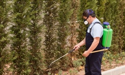 Up to 57% Off Exterior Mosquito Spraying  at Green Home Solutions of Pittsburgh