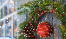 "Live Fresh Cut 20"" Pacific Northwest Christmas Wreaths"