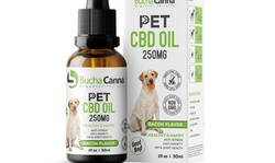 $25 or $50 Towards CBD and Kombucha Products at Bucha Canna (Up to 46% Off)