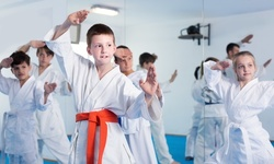 $45 for One-Month Membership and Uniform for One at Iron Lion Karate ($145 Value)