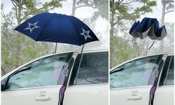 Fabrique NFL Reverse Open/Close Betta Brella Umbrellas (1 o 2-Pack)