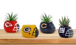 """Sporticulture NFL Team Pride 3"""" Ceramic Helmet Succulent Planter"""