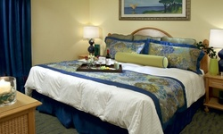 Stay at Blue Tree Resort at Lake Buena Vista in Orlando, FL