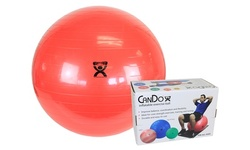 CanDo inflatable Exercise Stability Yoga Ball
