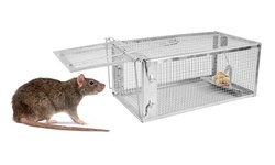 iMounTEK Catch & Release Humane Steel Rodent Trap Cage