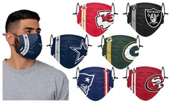 NFL Actual On-Field Team Face Mask