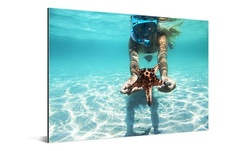 """One, Two, Three, Four, Five, or Sic 12"""" x 8"""" Custom Metal Prints from ConvasOnSale (Up to 85% Off)"""