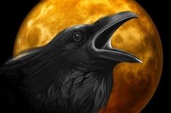 Edgar Allan Poe Journey - (part 2 - PM)