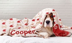 Custom Dog Photo Blankets, Extra Comfy & Durable Plush Material from Printerpix (Up to 80% Off).