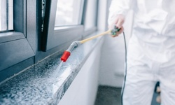 Disinfectant Interior Treatment for Up to 400, 500, or 1,000 Sq. Ft from Royal Tint & Detailing (Up to 54% Off)