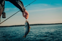$300 for Half-Day Fly Fishing Trip for Up To Two at Playin-Hooky ($400 Value)