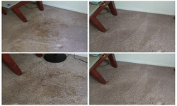 Up to 46% Off on Carpet Cleaning at Rug Wranglers