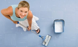 $112 for $250 Worth of Services — Hoosier Maid