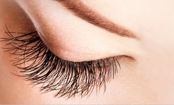 Up to 40% Off on Eyelash Extensions at Bossy beauty lab