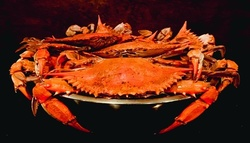 $15 For $30 Worth Of Seafood Dining (Also Valid On Take-Out W/Min. Purchase $45)