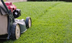 Up to 28% Off on Landscaping at Daniels Boy Lawn Service