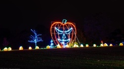 $24 for Halloween Light Show Entry for One Car at Demarest Farms, Through October 31 ($35 Value)