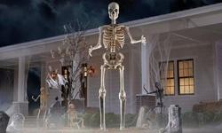 40% off Halloween Decor
