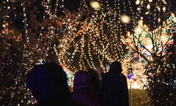 Tickets to NYC Winter Lantern Festival or Twilight at Night (Up to 43% Off)
