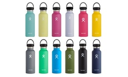 Hydro Flask Vacuum Insulated Standard Stainless Steel Water Bottle with Flex Cap
