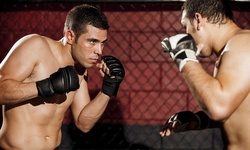 Four Classes or One-Month Membership at MMA World (Up to 88% Off)