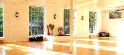Unlimited Live-Stream Yoga Classes for Two Weeks from Dig Yoga (Up to 10% Off)
