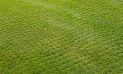 Up to 51% Off on Lawn Aeration Service at Infascapes Property Management LLC